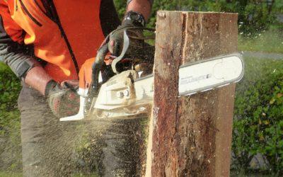 wood-1728019_1920
