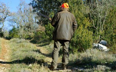 hunting-583086_1920
