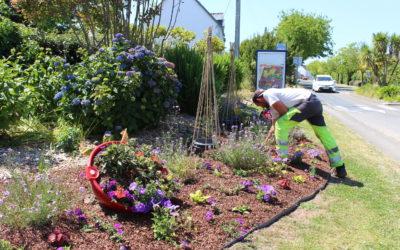 Création-Plantation-Mai2020-SandrineGalipot (2)