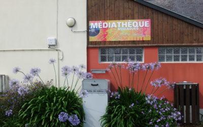 médiathèque-boîteretour-Mai2020-AnnieFranceCanévet