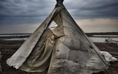 Yamal peninsula,north-west Siberia, Russia:Three Nenet familieslive on the tundra in a reindeer-skin tents or chums (ital); the group has around 600 reindeer.