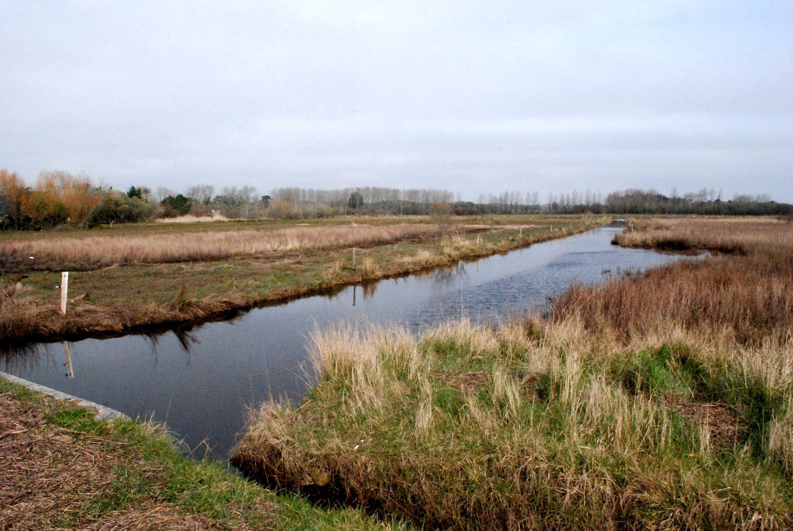 """Balade nature """"Balade contée sur le polder"""""""