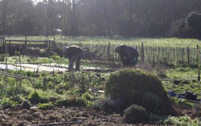 JardinsdePenMorvan-CCAS-Février2021 (13)